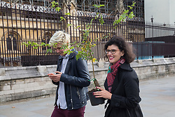 London, UK. 8 October, 2019. Layla Moran, Liberal Democrat MP for Oxford West and Abingdon, receives a tree from Extinction Rebellion climate activists in Old Palace Yard on the second day of International Rebellion protests. Activists created a fledgling forest of potted native trees outside Parliament as part of an initiative named Reforest Earth and they were then presented to MPs to call on the government to plant billions of trees across the UK and support the planting of trillions more around the world.