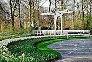 Draw bridge at Keukenhof Spring Tulip Gardens, Lisse, The Netherlands.