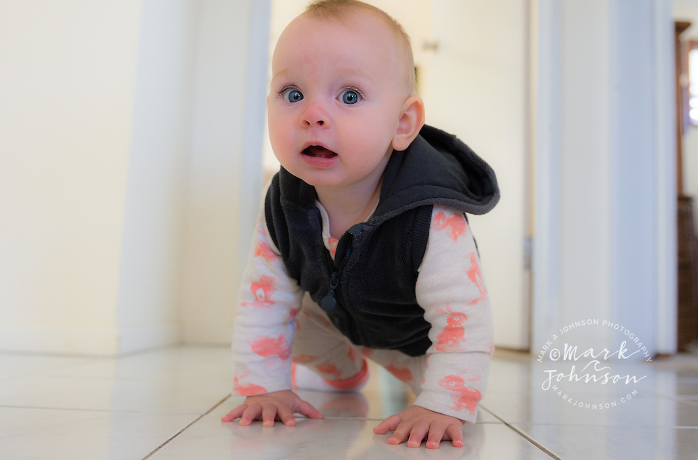 9 month old baby girl crawling on the floor