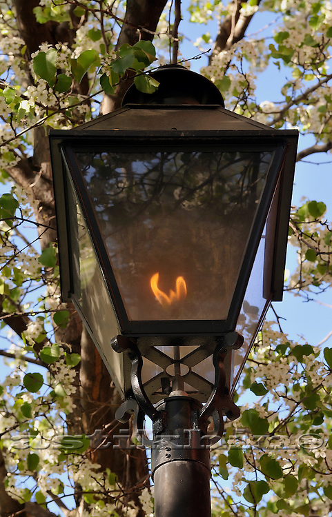 Gas Light on Brooklyn street