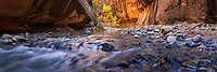 Walking through The Narrows in Zion National Park, you'll occassionally come across sprawling panoramic views of the rushing Virgin River and the massive canyon walls.