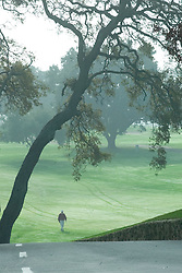 Stanford golf course