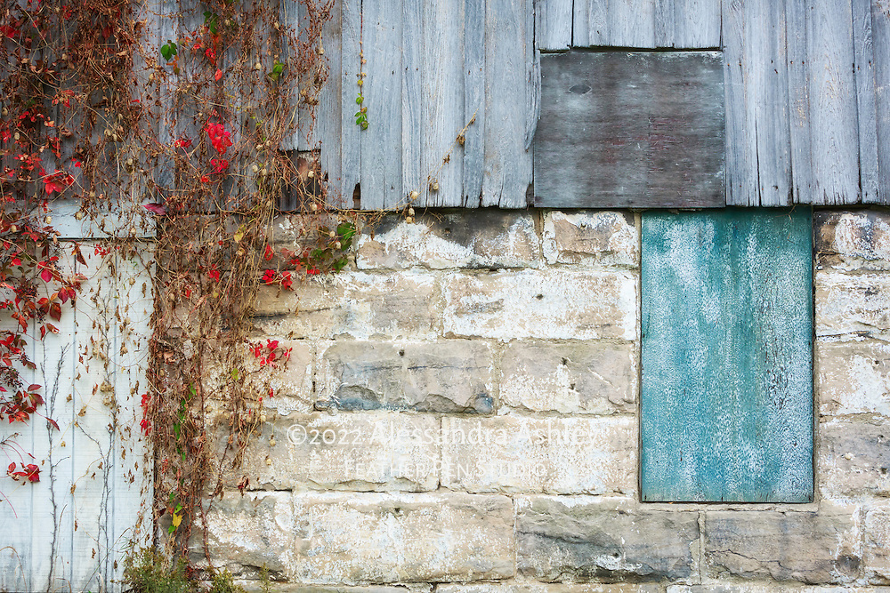 Weathered vintage barn surfaces and foliage in autumn, rural northeast Ohio.