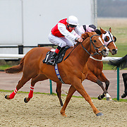 Lingfield 24th March 2013