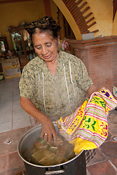 North America, Mexico, Oaxaca Province, Teotilan del Valle, woman wrapping tamales