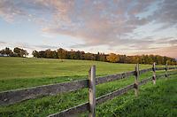Fram pasture, Cabot, Vermont