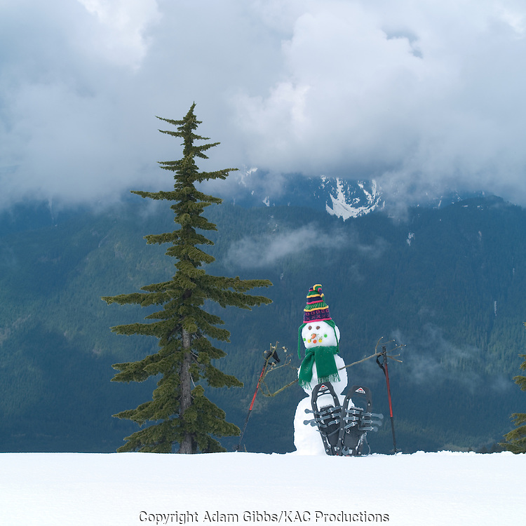 Snowman, Mt. Seymour Provincial Park, British Columbia, Canada
