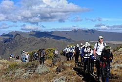 19-10-2008 REPORTAGE: KILIMANJARO CHALLENGE 2008: TANZANIA <br /> Van kamp New Shira (3847m), via Lava Tower (4642m) naar kamp Barranco op 3985 meter. De Kilimanjaro Challenge van de BvdGf.<br /> &copy;2008-FotoHoogendoorn.nl