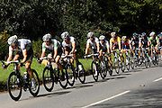 UK, September 15 2011: The peloton, led by Team HTC, head across Woodbury Common towards the finish in Exmouth during the fifth stage of the 2011 Tour of Britain. The stage started in Exeter and finished in Exmouth. Copyright 2011 Peter Horrell