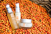 Sibu products and Sea Buckthorn berries.