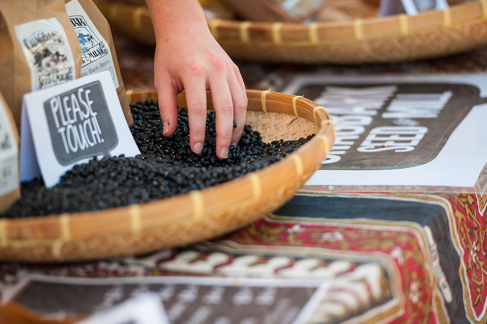 Chelsea Simmons, a 5th year senior, runs her hands through beans at Shagbark Seed & Mill's table at the OU Mini Farmer's Market held in Howard Park on Friday, September 7, 2012.