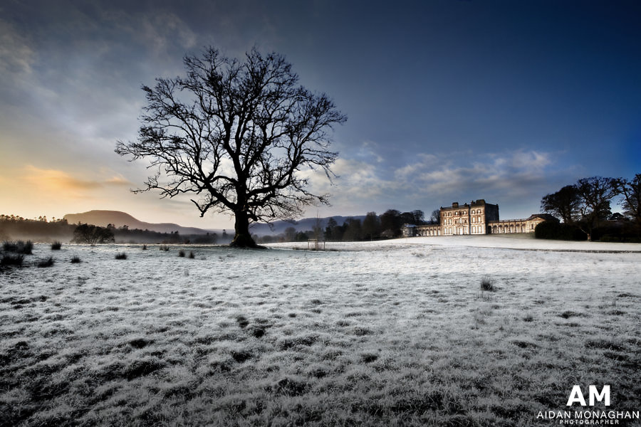 Winter Dawn<br />