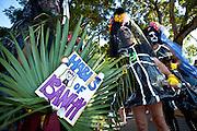 Costumed revelers during Fantasy Fest halloween parade in Key West, Florida.