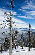 Brennan Lagasse<br /> Lake Tahoe, CA