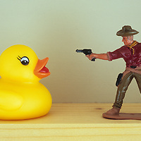 Duck takes on cowboy