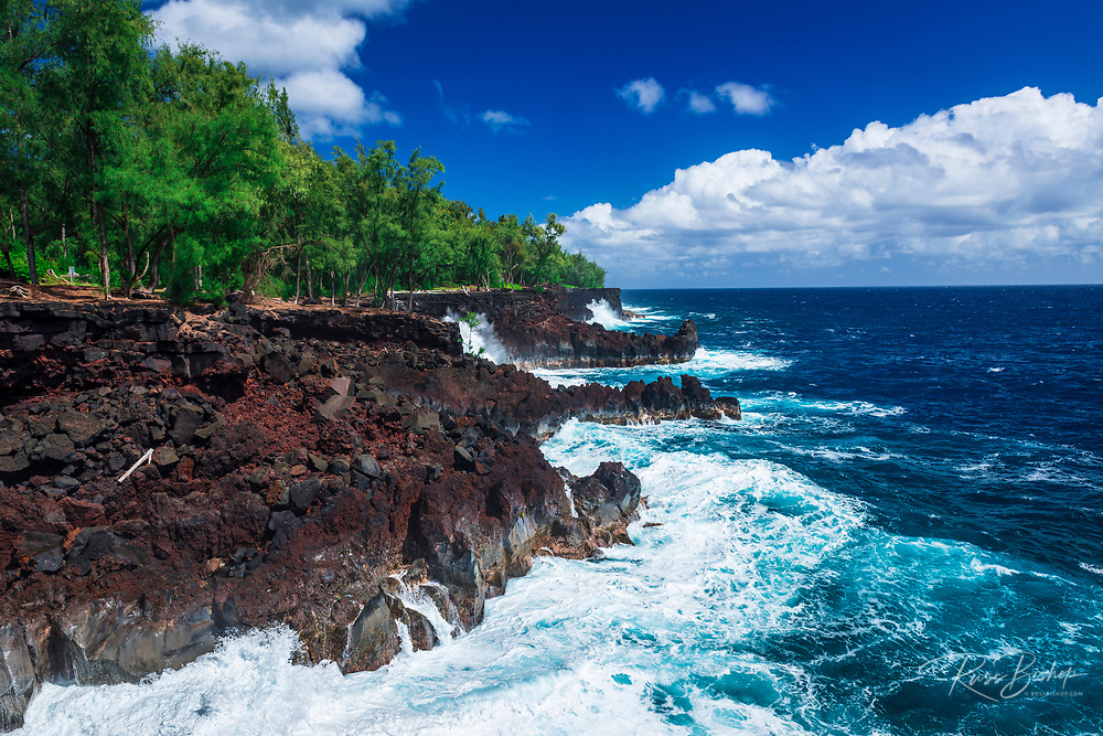 Rocky coastline at MacKenzie State Park, Pahoa, The Big Island, Hawaii USA