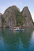 A floating house in front of a Limestone karst in Ha Long Bay on a sunny day with blue sky, near Cat Ba Island, Vietnam