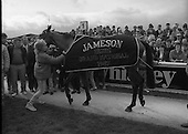 1987 - Jameson Irish Grand National   (R54).