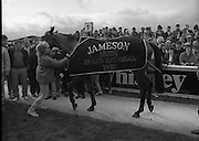 Irish Grand National At Fairyhouse.  (R54)..1987..20.04.1987..04.20.1987..20th April 1987..The Easter Racing Festival at Fairyhouse included the running of the Jameson sponsored Irish Grand National. Another featured race was the Jameson Gold Cup which was also run on Easter Monday...Picture shows 'Brittany Boy' winner of The Jameson Irish Grand National at Fairyhouse, Co Meath.