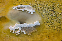 Small hot spring, Yellowstone National Park