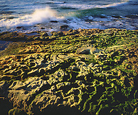 I just had to photograph the vibrant green moss covered tide pools.  What makes this a great photo is the breaking Pacific Ocean glowing wave.