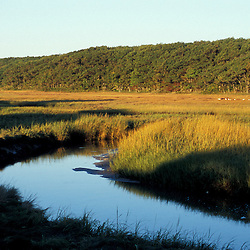 Biddeford, ME. A tidal creek and salt marsh near Biddeford Pool.  TPL project - Anuszewski property.