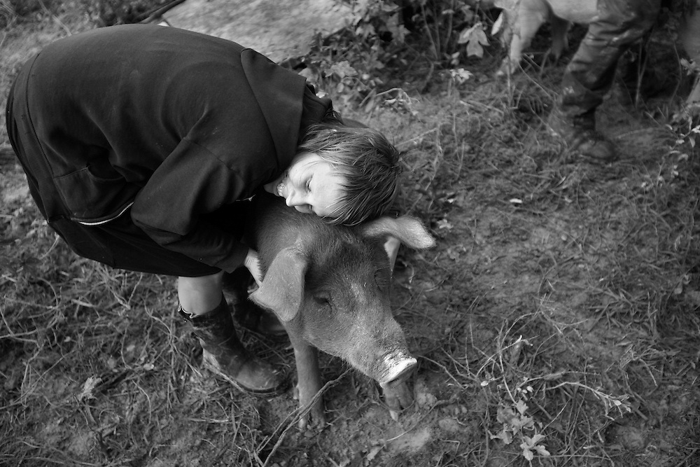 Kristen gives one of the pigs, Alf, a hug two days before the animals are sent to slaughter. Before working on the farm, Kristin was vegan, not eating meat or animal products. Sending the pigs to slaughter was very upsetting to her.