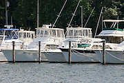Boats moored on the Connecticut River