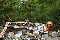Wood Bridge Over a Glacier Creek. Hike and Equitrekking from Hotel Las Torres to Mrador Las Torres in Torres del Paine National Park. Image taken with a Nikon D3x and 50 mm f/1.4G lens (ISO 100, 50 mm, f/6.3, 1/160 sec).