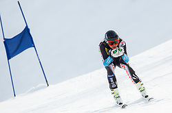 DEBELAK Tilen  of Slovenia during Men's Super Combined Slovenian National Championship 2014, on April 1, 2014 in Krvavec, Slovenia. Photo by Vid Ponikvar / Sportida