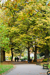 Couple walk Hand in Hand through the Autumn trees of Weston Park Sheffield<br />