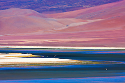 Colorful mineral patterns and water of Laguna Colorada, Bolivia