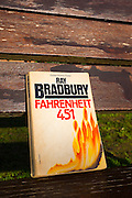 Ray Bradbury's Farenheit 451, published in 1953.