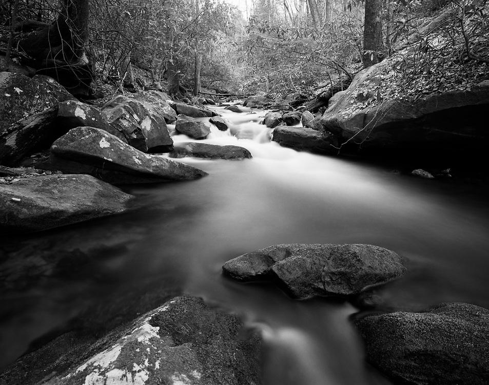 Lovinggood Creek/North Georgia/Chattahoochee National Forest<br /> Mamiya 7II/43mm lens/Ilford Film