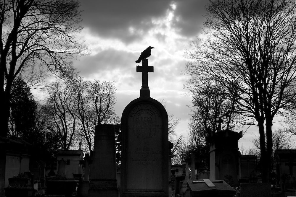 A raven sits on top of a grave marker in the Pere Lachaise cemetary in the Belleville section of Paris, France.