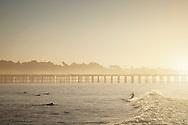 A dawn patrol surf session at the local break in Ventura, California.
