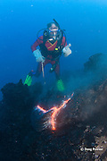 diver Bud Turpin and underwater eruption of pillow lava at ocean entry of Kilauea Volcano, Hawaii Island ( the Big Island ), Hawaii, U.S.A. ( Central Pacific Ocean ) MR 381