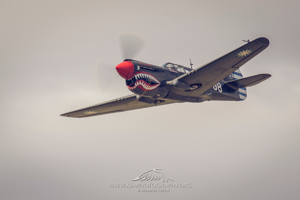 P40 Kittyhawk at Warbirds over Wanaka 2016, New Zealand