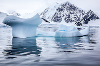 Antarctic scenery of stunning icebergs and glassy waters.