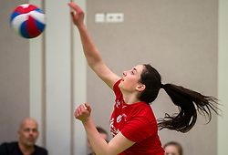 31-03-2019 NED: Final A Volleybaldirect Open, Koog aan de Zaan<br /> 16 teams of girls and boys D competed for the Dutch Open Championship / Apeldoorn