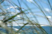 Seascape 0012