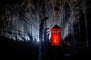 AUSCHWITZ - Koning Willem-Alexander, koningin Maxima en premier Mark Rutte tijdens de 75-jarige bevrijding van het voormalige Duitse concentratie- en vernietigingskamp Auschwitz-Birkenau bij.  robin utrecht