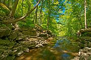 16 Mile Creek tumbles over Irondequoit Limestone of the Niagara Escarpment at Louth Falls. Conservation Area.  Golden Horseshoe. Niagara Peninsula.<br />Jordan<br />Ontario<br />Canada