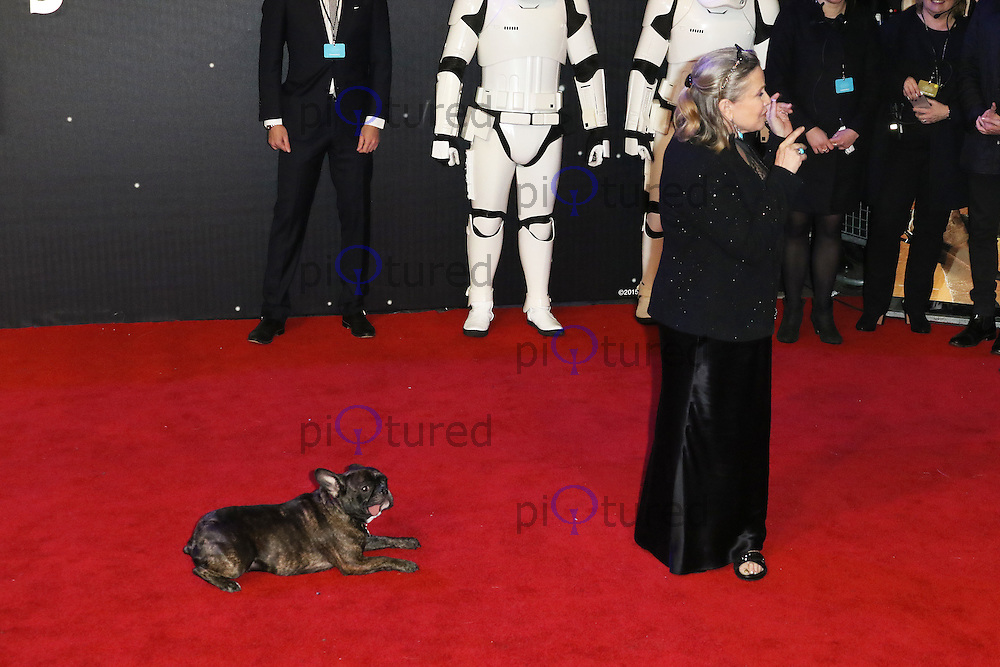Carrie Fisher, Star Wars: The Force Awakens - European Premiere, Leicester Square, London UK, 16 December 2015, Photo by Richard Goldschmidt