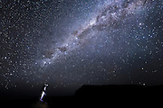The awe-inspiring Milky Way bears semblance to a celestial flipper, reaching out to a solitary penguin standing on a rocky outcrop in the Curio Bay Fossil Forest.  With a declining population of less than 5000, the endangered Yellow-eyed Penguin is one of the world's rarest penguins, and found only in New Zealand.<br />
