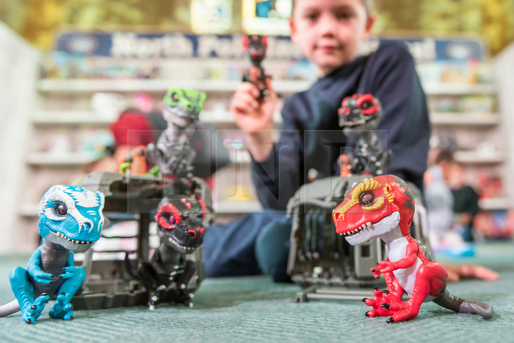 "© Licensed to London News Pictures. 14/11/2018. LONDON, UK. Harry, aged 8 , plays with Untamed Jailbreak T-Rex Playset by Fingerlings. Preview of ""DreamToys"", the official toys and games Christmas Preview, held at St Mary's church in Marylebone.  Recognised as the countdown to Christmas, the Toy Retailer's Association, an independent panel of leading UK toy retailers, have selected the definitive and most authoritative list of what toys will be the hottest property this Christmas. [Child models provided by show organisers, permission obtained to be photographed].  Photo credit: Stephen Chung/LNP"