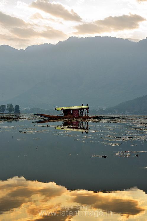 A Shikara, early in the morning at Dal Lake Srinagar.