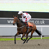 Oh So Sassy and George Baker winning the 5.30 race