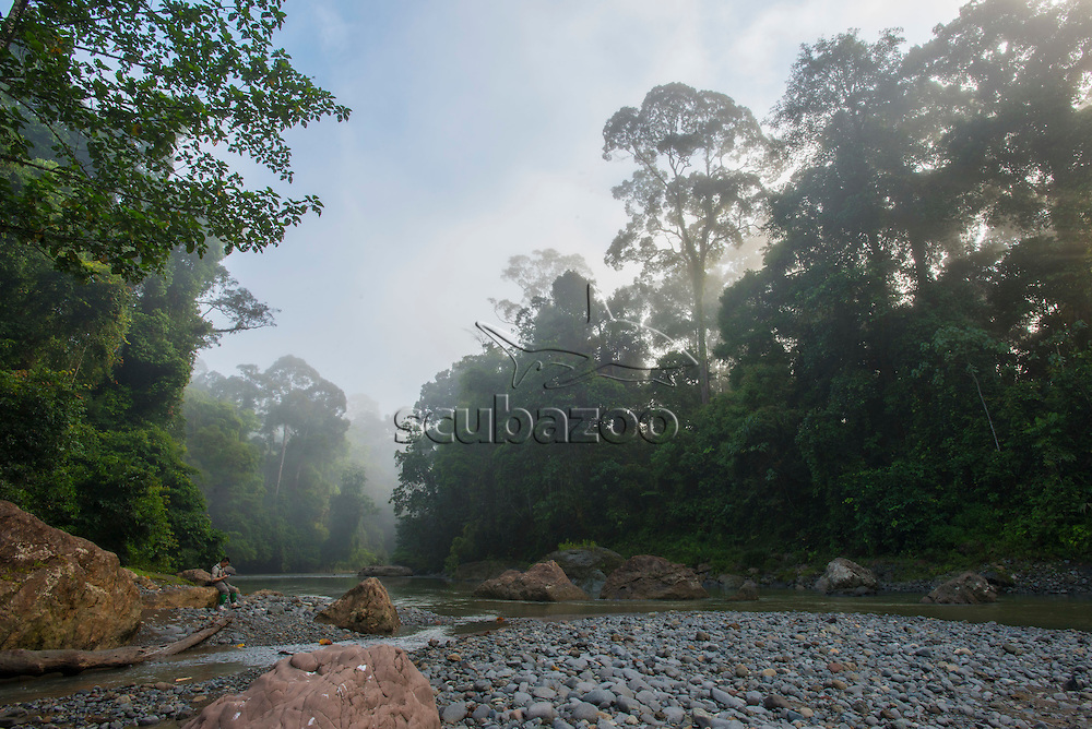 A misty river bed, Danum Valley, Sabah, Malaysia, Borneo, South East Asia,