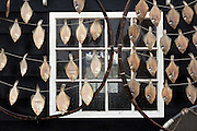 outdoors drying of fish at Zuiderzeemuseum Enkhuizen Netherlands